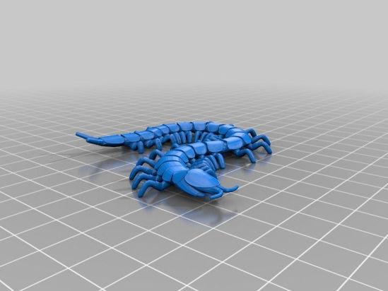 Picture of Centipede