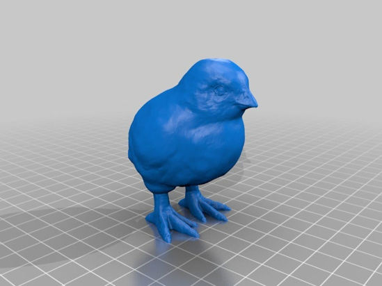 Picture of Chick