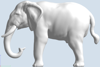 Picture of Elephant (YahooJAPAN)