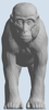 Picture of Monkey