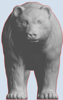 Picture of Bear (YahooJAPAN)